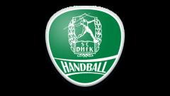 SC Handball Logo