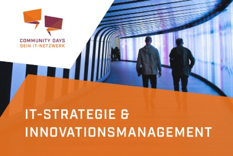 IT-Strategie und Innovationsmanagement